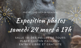 Expo photos au Zoo de Beauval
